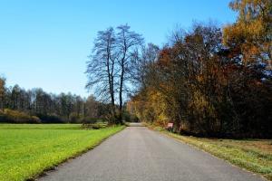 Wypoczynek na wsi - czy to dobry pomysł?
